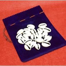 Diloggun Cowrie Divination Shell + gift bag